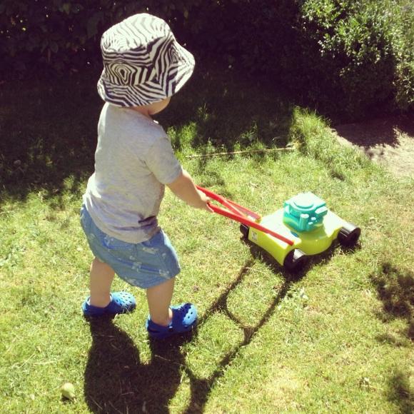 Hugo klipper gräsmattan