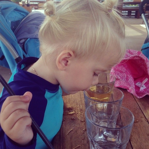 Lilly testar olika drycker