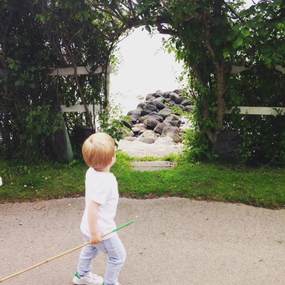 Hugo på promenad
