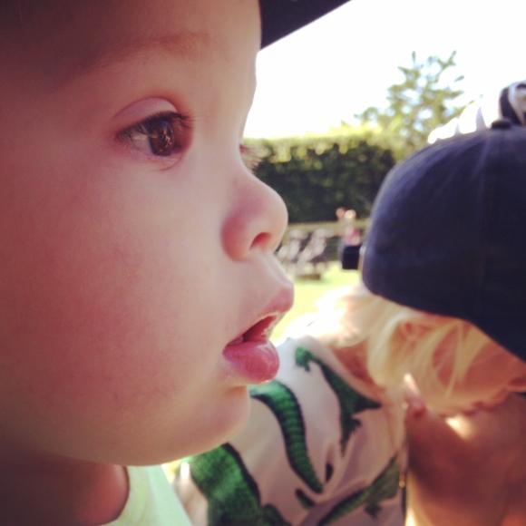 Hugo beundrar djuren