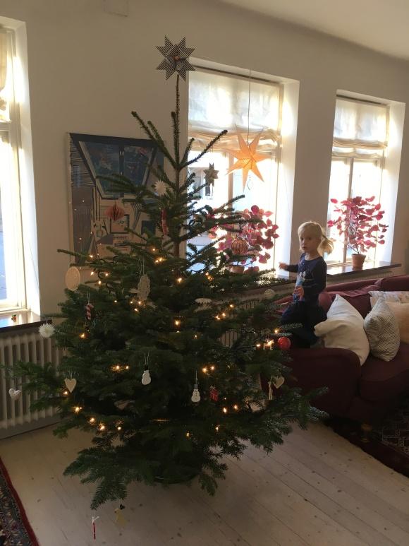 Julgran på Stormgatan